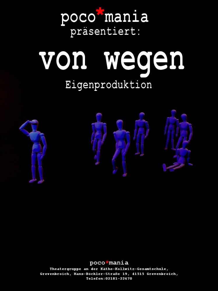 von_wegen_plakat_2008